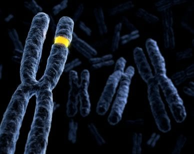 Extremely detailed royalty free rendering of different chromosomes. Shallow depth of field.